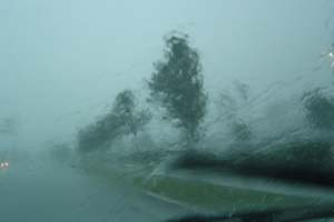 Tuesday Rain